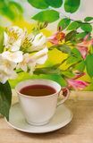 Φλυτζάνι με το κόκκινο τσάι Στοκ Φωτογραφίες