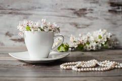 Φλυτζάνι πρωινού των ανθίζοντας άσπρων λουλουδιών του δέντρου αχλαδιών, χάντρες από τα μαργαριτάρια Στοκ Φωτογραφίες