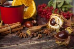 Φλυτζάνι του θερμού θερμαμένου κρασιού στον ξύλινους πίνακα και το κάστανο Στοκ Φωτογραφία