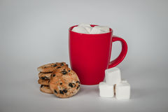 Φλυτζάνι του κακάου στο άσπρο υπόβαθρο marshmallows και ραβδί καραμελών Στοκ φωτογραφίες με δικαίωμα ελεύθερης χρήσης