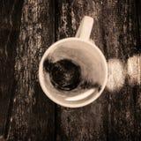 Φλυτζάνι του καυτού γάλακτος σοκολάτας Στοκ εικόνα με δικαίωμα ελεύθερης χρήσης