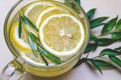 Φλυτζάνι του τσαγιού λεμονιών, πράσινα φύλλα, ποτό Έννοια υγειονομικής περίθαλψης, eco στοκ φωτογραφία