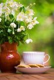 Φλυτζάνι του τσαγιού και anemones Στοκ Εικόνες