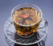 Κινεζικό τσάι λουλουδιών σε ένα φλυτζάνι Στοκ Εικόνες