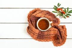 Φλυτζάνι του τσαγιού, του πλεκτών μαντίλι και rowanberry του κλάδου Στοκ Φωτογραφία