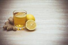 Φλυτζάνι του kombucha με το λεμόνι και την πιπερόριζα Στοκ εικόνες με δικαίωμα ελεύθερης χρήσης