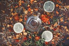 Φλυτζάνι υποβάθρου των φετών του λεμονιού και των λουλουδιών Στοκ Φωτογραφία