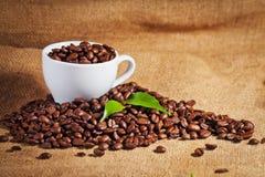 Φλυτζανιών και arabica καφέ φασόλια στο σάκο υφασμάτων Στοκ Φωτογραφίες
