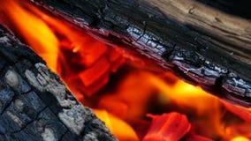 Φλόγα πραγματικής πυρκαγιάς απόθεμα βίντεο