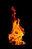 Φλόγα πυρκαγιάς που απομονώνεται απομονωμένο στο ο Μαύρος υπόβαθρο - όμορφο yel Στοκ Εικόνα