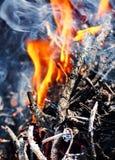 Φλόγα στο καυσόξυλο Στοκ φωτογραφίες με δικαίωμα ελεύθερης χρήσης