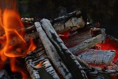 Φλόγα των ξύλινων κώνων φλογών πυρκαγιάς φωτιών στην εστία Στοκ Εικόνες
