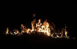 Φλόγα στοκ εικόνα