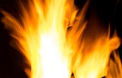 Φλόγες του καψίματος της πυρκαγιάς που απομονώνεται Στοκ Φωτογραφία