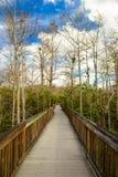 Φλώριδα Everglades Στοκ φωτογραφίες με δικαίωμα ελεύθερης χρήσης