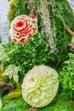 Χάραξη φρούτων πεπονιών και καρπουζιών στον κήπο Στοκ φωτογραφία με δικαίωμα ελεύθερης χρήσης