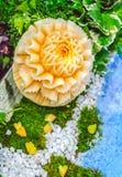 Χάραξη φρούτων πεπονιών στον κήπο Στοκ Εικόνες