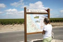 Χάρτης και άμπελοι τουριστών στη γαλλική περιοχή κρασιού Στοκ εικόνα με δικαίωμα ελεύθερης χρήσης