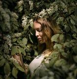 Χάστε επάνω το πορτρέτο ενός όμορφου κοριτσιού μεταξύ του φυλλώματος και των λουλουδιών άνοιξη στοκ φωτογραφίες με δικαίωμα ελεύθερης χρήσης
