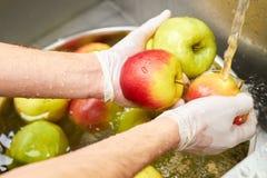 Χέρια αρχιμαγείρων που πλένουν τα μήλα Στοκ Εικόνες