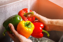 Χέρια ατόμων που πλένουν το πιπέρι κουδουνιών Στοκ Φωτογραφία