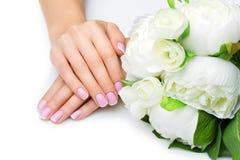 Χέρια γυναικών με το γαλλικό μανικιούρ στοκ φωτογραφίες με δικαίωμα ελεύθερης χρήσης