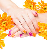 Χέρια γυναικών με το φωτεινό μανικιούρ και τα λουλούδια γύρω Στοκ φωτογραφία με δικαίωμα ελεύθερης χρήσης
