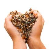 Χέρια γυναικών που διαμορφώνουν τη μορφή καρδιών η ανασκόπηση απομόνωσε το λευκό Στοκ Φωτογραφία