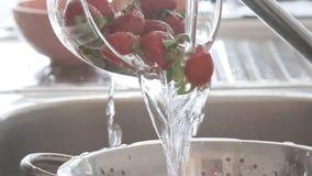 Χέρια γυναικών που πλένουν τις φράουλες κάτω από το ρεύμα νερού φιλμ μικρού μήκους