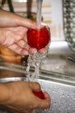 Χέρια γυναικών ` s που πλένουν τις κόκκινες ντομάτες κάτω από το νερό στοκ εικόνες