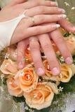 χέρια δύο Στοκ Φωτογραφία