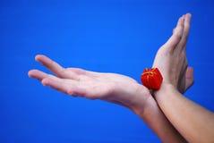 χέρια δώρων Στοκ φωτογραφία με δικαίωμα ελεύθερης χρήσης