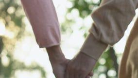 Χέρια εκμετάλλευσης ηλικιωμένων κυριών και ατόμων και περπάτημα στο θερινό πάρκο, ρομαντικές στιγμές απόθεμα βίντεο