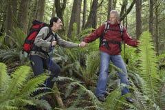 Χέρια εκμετάλλευσης ζεύγους και περπάτημα στο δάσος Στοκ φωτογραφία με δικαίωμα ελεύθερης χρήσης
