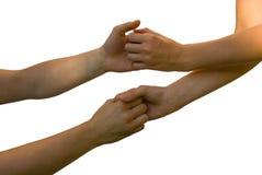 Χέρια και μπράτσα που κρατούν το ένα το άλλο Στοκ Φωτογραφία