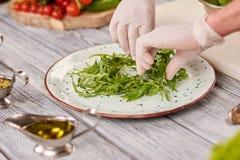 Χέρια και arugula αρχιμαγείρων στο πιάτο Στοκ εικόνα με δικαίωμα ελεύθερης χρήσης