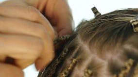 Χέρια κινηματογραφήσεων σε πρώτο πλάνο του επαγγελματικού κομμωτή αφρικανικές κοτσίδες Παραδοσιακά αφρικανικά hairstyles στις λευ απόθεμα βίντεο