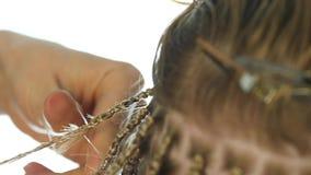 Χέρια κινηματογραφήσεων σε πρώτο πλάνο του επαγγελματικού κομμωτή αφρικανικές κοτσίδες Παραδοσιακά αφρικανικά hairstyles στις λευ φιλμ μικρού μήκους