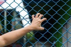 Χέρια κοριτσιών στο φράκτη καλωδίων Στοκ φωτογραφία με δικαίωμα ελεύθερης χρήσης