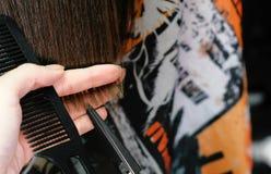 Χέρια κουρέων ` s που κόβουν το μακρύ καυτό ψαλίδι τρίχας brunette όψη υψηλής διάλυσης eyedroppers κινηματογραφήσεων σε πρώτο πλά Στοκ εικόνα με δικαίωμα ελεύθερης χρήσης