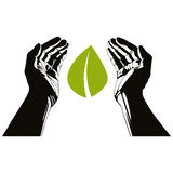 Χέρια με το διανυσματικό σύμβολο φύλλων Στοκ φωτογραφία με δικαίωμα ελεύθερης χρήσης
