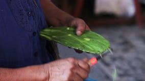 Χέρια μιας εγγενούς γυναίκας, που καθαρίζουν ένα τραχύ αχλάδι για να το πωλήσει στην αγορά, στην πόλη Xilitla απόθεμα βίντεο