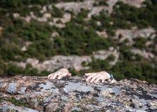 Χέρια ορειβατών βράχου στοκ εικόνες με δικαίωμα ελεύθερης χρήσης