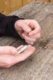 Χέρια που δένουν το θέλγητρο αλιείας Στοκ φωτογραφίες με δικαίωμα ελεύθερης χρήσης
