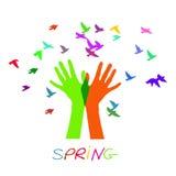 Χέρια που απελευθερώνουν ένα κοπάδι των πουλιών Άνοιξη Στοκ εικόνες με δικαίωμα ελεύθερης χρήσης