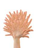 χέρια που γίνονται το δέντρο Στοκ φωτογραφία με δικαίωμα ελεύθερης χρήσης