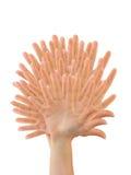 χέρια που γίνονται το δέντρ& Στοκ Φωτογραφίες