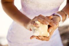 Χέρια που κρατούν ένα θαλασσινό κοχύλι, τροπικό υπόβαθρο στοκ εικόνες με δικαίωμα ελεύθερης χρήσης