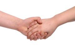 χέρια που κρατούν τα κατσίκια Στοκ φωτογραφία με δικαίωμα ελεύθερης χρήσης