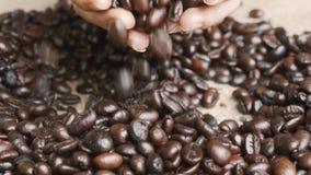 Χέρια που κρατούν τα φρέσκα ψημένα φασόλια καφέ φιλμ μικρού μήκους